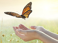 Hand butterfly image